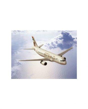 Airbus A320 Etihad Airways